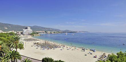 Utsikt over stranden