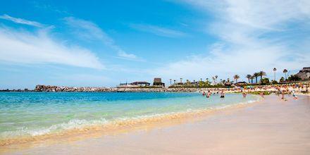Stranden i Playa de Amadores