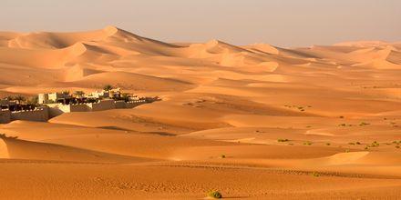 Vakkert ørkenlandskap
