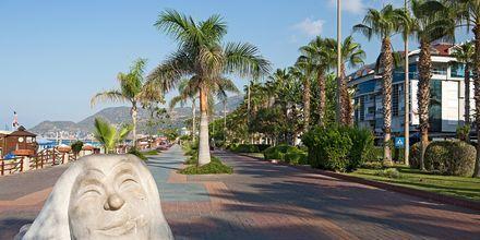 Strandpromenaden i Alanya, Tyrkia