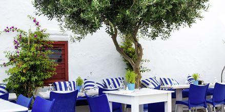 Bar på Alonissos
