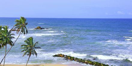 Stranden ved hotellet
