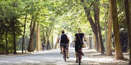 Amsterdams største park, Vondelpark, er en herlig grønn oase midt i byen.