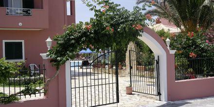 Anastasia (Korfu)