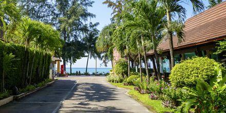 Veien ned til stranden fra hotellet