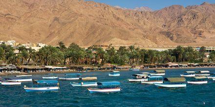 Strand ved Aqaba i Jordan