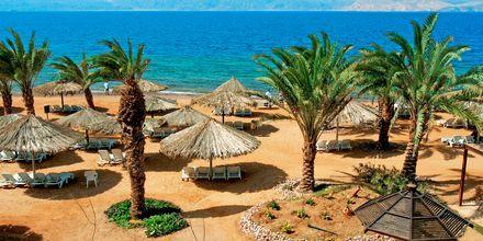 Stranden ved Hotel Mövenpick i Aqaba i Jordan