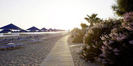 Stranden ved Aquila Rithymna Beach