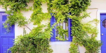 Sjarmerende gater i Argostoli