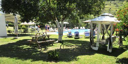 Aristidis Garden