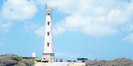 Den beste utsikten over Aruba får du fra California Lighthouse, lengst oppe i nord.