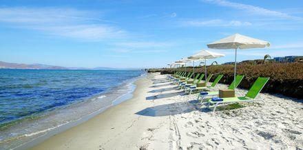 Stranden ved hotell Astir Odysseus