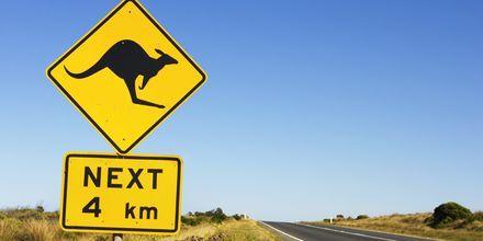 Unike veiskilt i Australia
