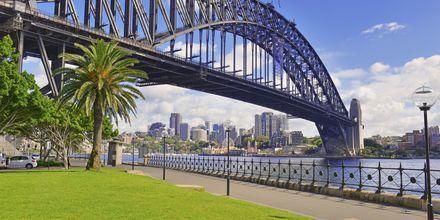 Harbour Bridge i Sydney