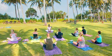 Yoga i hotellets hage