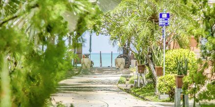Baan Khaolak Beach Resort – vinter