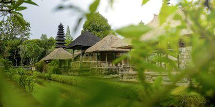 Tempelet Pura Taman