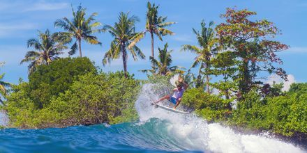 Surfing på Bali på oppleves.