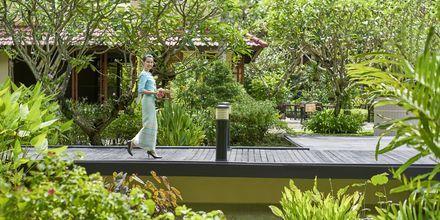 Hotellet Dusit Thani Laguna Phuket