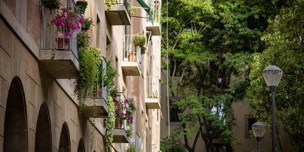 Frodige parker og fargerike balkongkasser.
