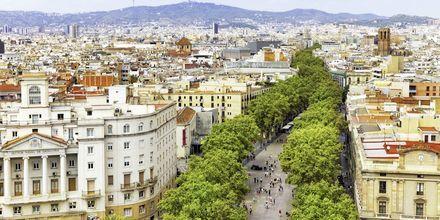 La Rambla i Barcelona, Spania.