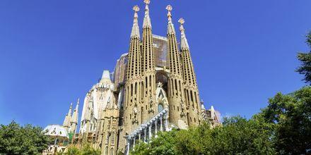 La Sagrada Familia i Barcelona, Spania.