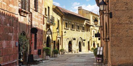 Det gotiske kvarteret Barri Gothic er et hyggelig område å rusle rundt i.