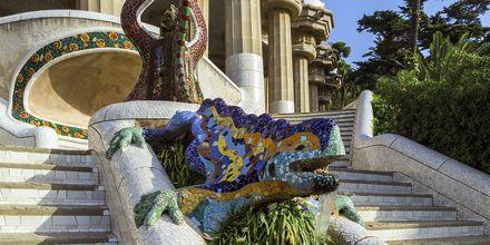 Den berømte mosaikkøglen i Parc Güell.