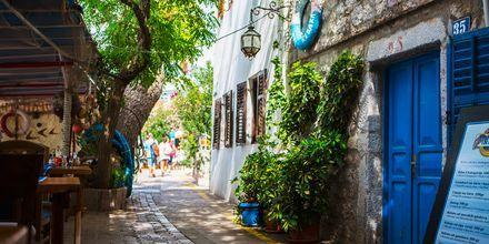 Hyggelig liten sidegate i Becici i Montenegro