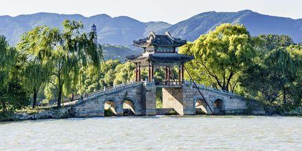 En majestetisk bro i parken som tilhører Sommerpalasset.