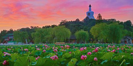 En reise til Beijing byr på skyskrapere og vakre og frodige omgivelser.