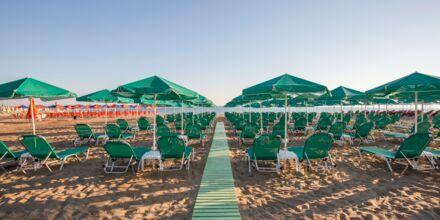 Stranden ved hotell Bio