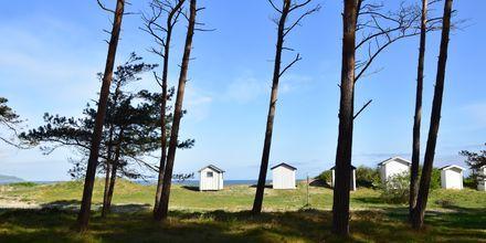 Bjärehalvøya / Båstad