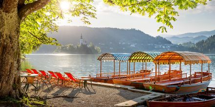 Morgenlys i Bled, Slovenia.