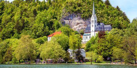 Kirken St. Martin's Parish i Bled, Slovenia.