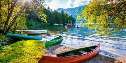 Ta en dagsutflukt til Lake Bohinj!