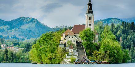 Kirke i Bled, Slovenia.