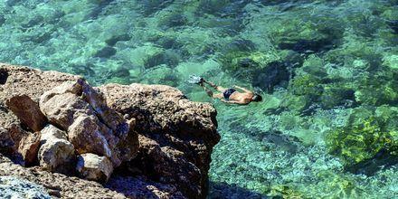 Snorkling i det krystallklare vannet