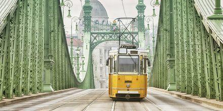 Gule trikker et av Budapests klassiske symboler.