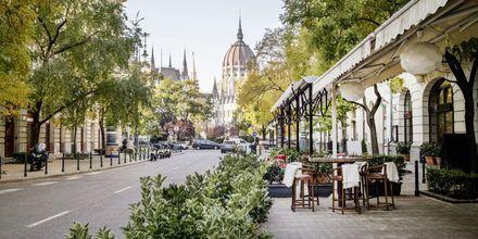 Det finnes mange restauranter å velge mellom i Budapest, Ungarn