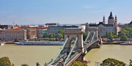Donau med St. Stefanskatedralen i bakgrunnen