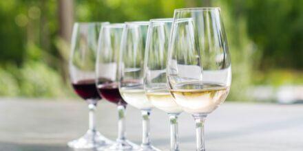 To av de mest populære vingårdene i Cape Town er Stellenbosch og Franschhoek.