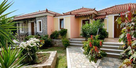Christinas and Eleftherias Garden