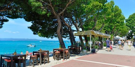 Strandpromenaden utenfor City Beach i Makarska i Kroatia