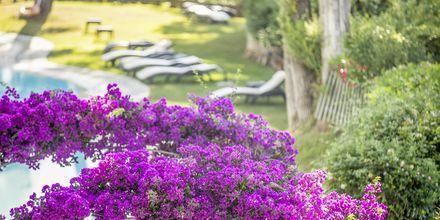 Corfu Holiday Palace Kanoni