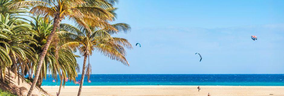 Costa Calma, Tarajalejo & La Pared
