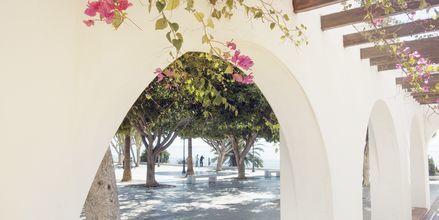 Costa del Sol har en klassisk spansk atmosfære med hvite hus, fargerike blomster og herlig havutsikt.