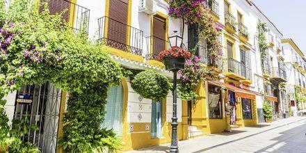 Marbella på Costa del Sol er et mer eksklusivt reisemål. Her er det vakre bygninger og prydefulle blomster.