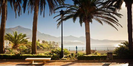 Det subtropiske klimaet på Costa del Sol glimter til med herlige reisemål og vakker natur.
