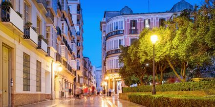 Byen Malaga fungerer utmerket som reisemål året rundt. Takket være den behagelige temperaturen.